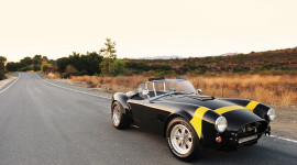 Shelby Cobra 289 Aircraft Picture