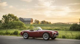 Shelby Cobra 289 Photo Download