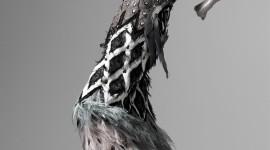 Steven Meisel Photography For Mobile#3