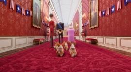 The Queen's Corgi Wallpaper Full HD