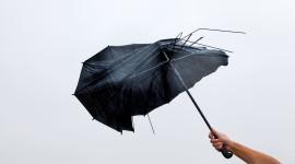 Umbrella Is Broken Photo Free