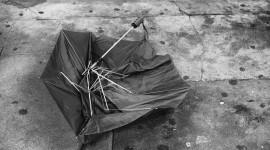 Umbrella Is Broken Wallpaper Free
