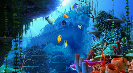 Underwater World Wallpaper Download Free