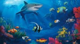 Underwater World Wallpaper HQ