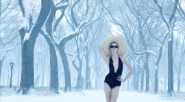 Annie Leibovitz Photos Wallpaper