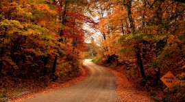 Autumn Road Wallpaper 1080p