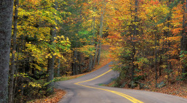 Autumn Road Wallpaper For Desktop