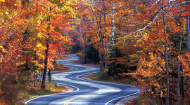 Autumn Road Wallpaper Gallery