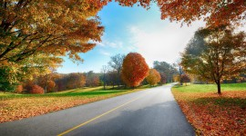 Autumn Road Wallpaper HQ