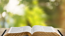 Bible Book Photo Download