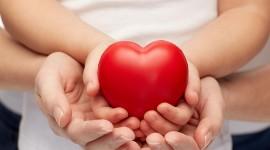 Children Hand Hearts Photo Download