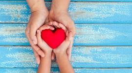 Children Hand Hearts Photo Free