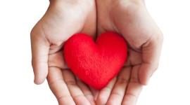 Children Hand Hearts Photo#1