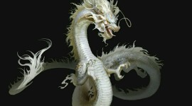 Chinese Dragon Desktop Wallpaper For PC