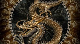 Chinese Dragon Desktop Wallpaper HQ