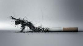 Cigarettes Wallpaper Download Free