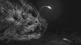 Creepy Fish Desktop Wallpaper Free