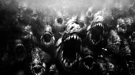 Creepy Fish Wallpaper Download