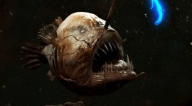 Creepy Fish Wallpaper Download Free