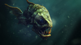 Creepy Fish Wallpaper For Desktop