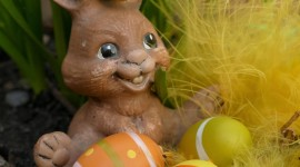 Easter Bunny Wallpaper For Android