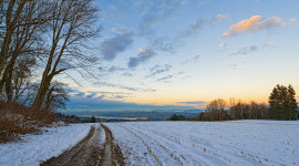 Field First Snow Photo Download