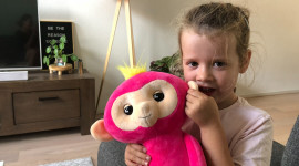 Fingerlings Hugs Photo