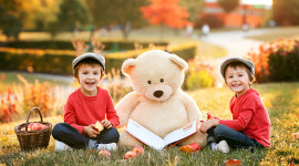 Huge Bear Toy Photo Download