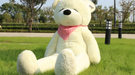 Huge Bear Toy Picture Download