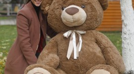 Huge Bear Toy Wallpaper For PC