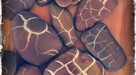 Lightning Stones Image