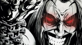 Lobo Desktop Wallpaper HD