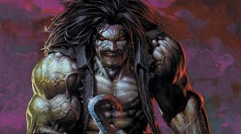 Lobo Wallpaper Download Free