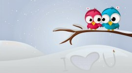 Love Birds High Quality Wallpaper