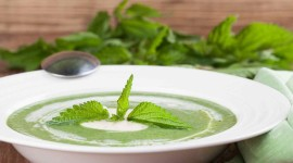 Nettle Soup Aircraft Picture