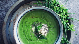 Nettle Soup Wallpaper For Mobile