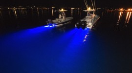Night Sailboat Lights Photo Free