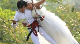 Skydiving Wedding Wallpaper For Android