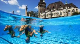 Synchronized Swimming Desktop Wallpaper