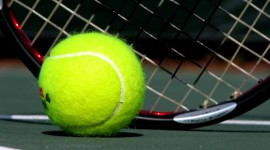 Tennis Ball Wallpaper Download Free