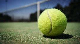 Tennis Ball Wallpaper Free