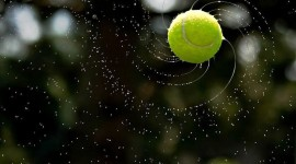Tennis Ball Wallpaper High Definition