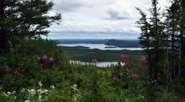 Terra Nova National Park Wallpaper High Definition