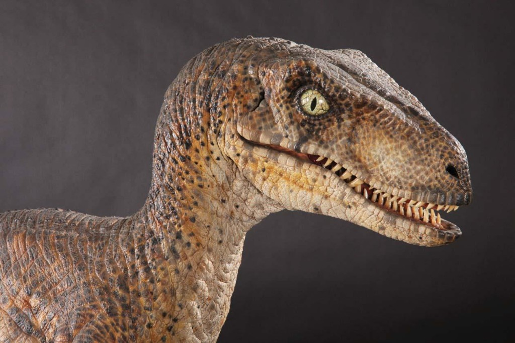 Velociraptor wallpapers HD