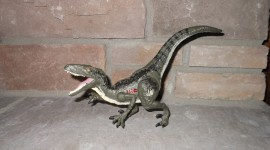 Velociraptor Wallpaper Download Free