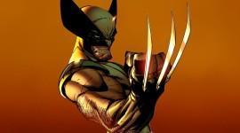Wolverine Art Wallpaper Wallpaper Free