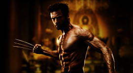 Wolverine High Quality Wallpaper