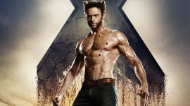 Wolverine Wallpaper Background