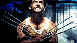 Wolverine Wallpaper Gallery