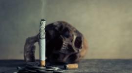 4K Man Cigarette Wallpaper HQ#1